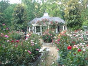 Gardens at 52 Blackland Road