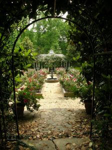 Rose Garden and Trellis at 52 Blackland Road
