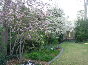 Spring Trees in the gardens at 52 Blackland Road